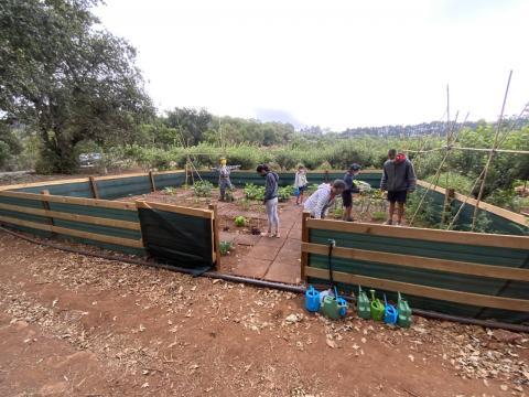 La población joven de Valleseco juega a preservar el sector primario/ canariasnoticias