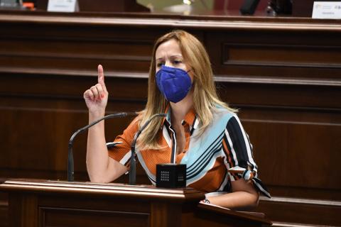 Rosa Dávila en el Parlamento de Canarias / CanariasNoticias.es