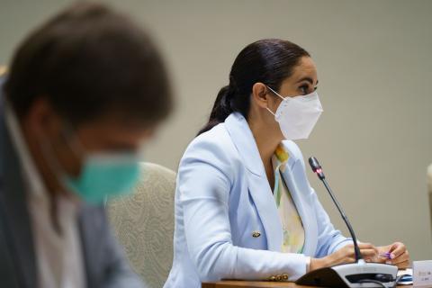 Vidina Espino, portavoz del Grupo Mixto en el Parlamento de Canarias / CanariasNoticias.es