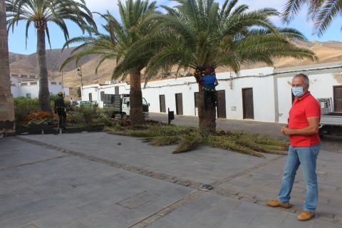 Acondicionamiento de Vega de Río Palmas en Betancuria (Fuerteventura) / CanariasNoticias.es