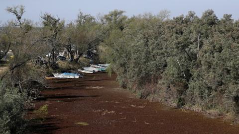 Botes varados en un humedal seco en la orilla del río Paraná, en Rosario, Argentina, el 8 de julio de 2021