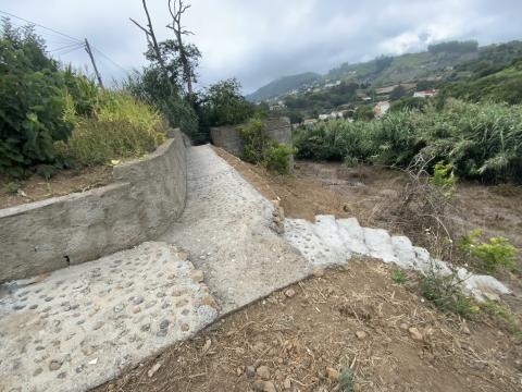 Camino rural de La Majadilla en Valleseco (Gran Canaria) / CanariasNoticias.es