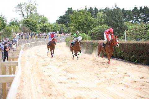 Carrera de caballos en La Laguna de Valleseco (Gran Canaria) / CanariasNoticias.es