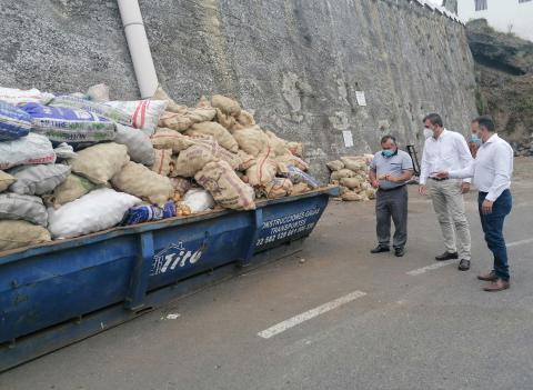 """Retirados 218.000 kilos de papas """"bichadas"""" por la polilla guatelmateca / CanariasNoticias.es"""